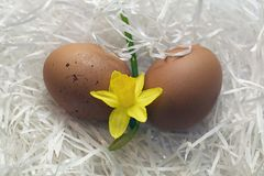 Nice colorful easter eggs with flower Royalty Free Stock Photography