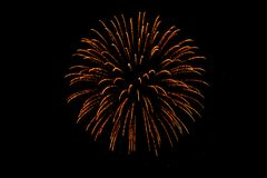 Nice colorful  Fireworks in the black sky. Main color is red tone Royalty Free Stock Photos