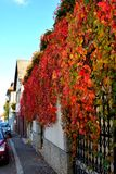 Nice colors. Typical landscape in the city Brasov, Transylvania, Romania, Autumn characteristic colors Royalty Free Stock Photos