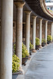 Nice columns Royalty Free Stock Photography