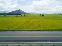 Nice combination of human made and nature creation. Nice combination of human made, road, and the nature of rice plantation and mountain behind Stock Photos