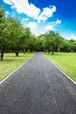Nice country road with blue sky Royalty Free Stock Images