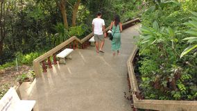 Nice couple walking together, outdoor, in the park. Nice couple walking together, outdoor, talking and smiling go down the stairs in tropical park stock footage
