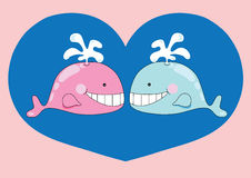 Nice couple of whale. Illustration of nice couple of whale, cartoon Royalty Free Stock Image