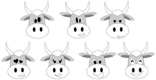 Set of Nice cow cartoon with different expressions Stock Image