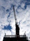 Nice crane Royalty Free Stock Photography