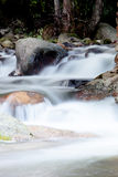 Nice creek with clear water Stock Images