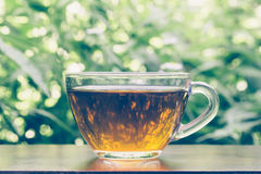A Nice Cup Hot Of Black Tea On Natural Green Background Royalty Free Stock Image