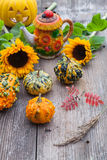 A nice decorative pumpkins on rustic background Stock Photo