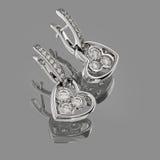 Nice earrings Stock Image