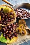Nice edible chestnuts Royalty Free Stock Photos
