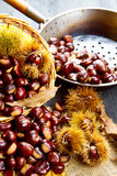 Nice edible chestnuts Royalty Free Stock Photo