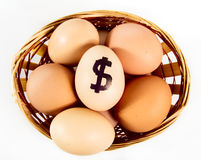 Nice eggs in basket with dollar sign. On white isolated background stock photography