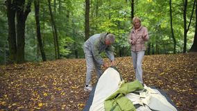 Nice eldelry couple of experienced tourists setting up the tent. Experienced tourists. Pleasant aged couple setting up the tent while going to spend their stock footage