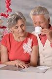 Nice elderly couple Stock Photography