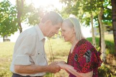 Nice elderly couple in a summer park stock images