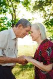 Nice elderly couple in a summer park. stock photos