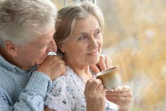 Nice elderly couple Royalty Free Stock Photos