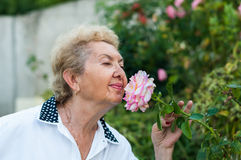 Nice elderly woman smelling flower in the garden on a warm summer day Stock Images