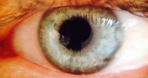 Nice eyeball close up Royalty Free Stock Images