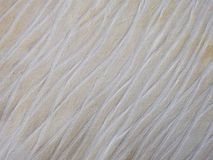 Brown with white line beautiful fabric texture Stock Photography