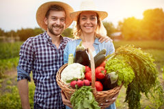 Nice farmers couple posing with basket with vegetables Stock Images