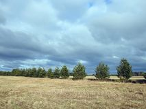 Field, trees and beautiful cloudy sky, Lithuania Royalty Free Stock Photos