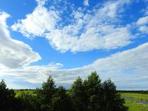 Trees, grass and beautiful cloudy sky, Lithuania Royalty Free Stock Photo