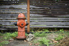 A nice fire hydrant in the rain Royalty Free Stock Image