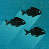 Nice fishes Royalty Free Stock Photos