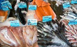 Nice - fiskmarknad Royaltyfria Foton