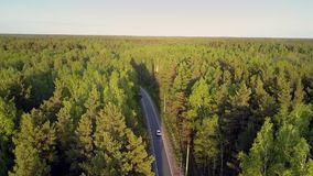 Nice flight over boundless forested area with car on road
