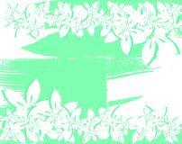 Nice floral background in green and white Stock Images