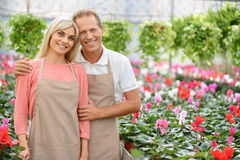 Nice florists working in the greenhouse Stock Image