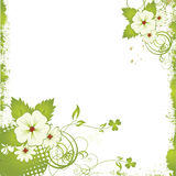 Nice flower grunge background Royalty Free Stock Photos