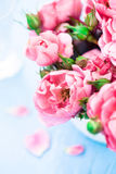 Nice flowers Stock Images
