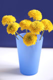 Nice flowers Stock Photos