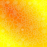 Nice flowers background. White flowers on orange and yellow background Royalty Free Stock Images