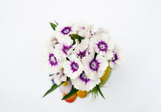 Nice flowers in the little vase Royalty Free Stock Photography