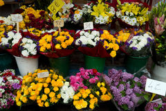 Nice - Flowers in the street market Stock Photos