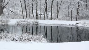 Snow quietly falling on a rural pond. stock footage