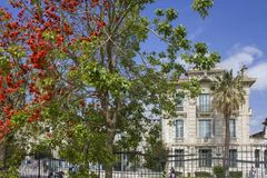 Historic lycee Massena in Nice. NICE, FRANCE - APRIL 23 2017: Historic lycee Massena in Nice, France, with a colorful tree in the foreground stock photos
