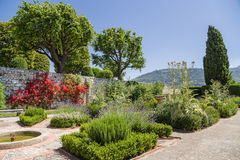 Nice, France. Cimiez Monastery Garden - 2 Stock Images