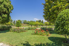 Nice, France. Cimiez Monastery Garden - 8 Stock Image