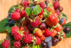 Nice fresh berry collection Stock Photo