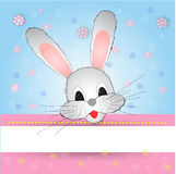 Nice and funny bunny Royalty Free Stock Image
