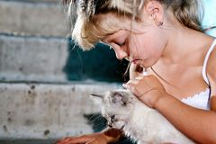 Nice girl with cat Royalty Free Stock Photography