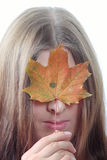 The nice girl closing person maple leaf. The nice girl closing the person an autumn maple leaf Royalty Free Stock Images