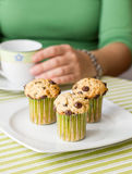Nice girl with a cup and chocolate chip muffin at breakfast. Nice girl with a cup and delicious chocolate chip muffin at breakfast in green striped tablecloth Stock Photos
