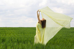 Nice girl dancing. In a green field Royalty Free Stock Photos